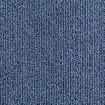 tapijttegels lussenpool blauw